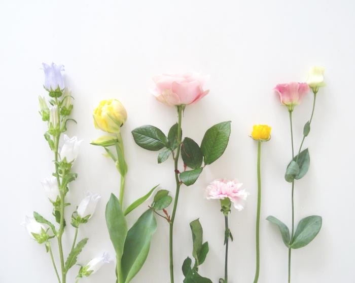 bloem4_0