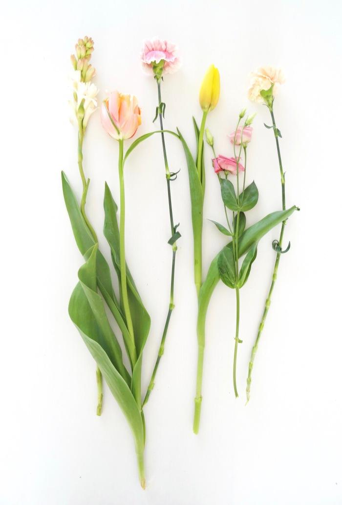 blog bloemen bovenaf helemaal1