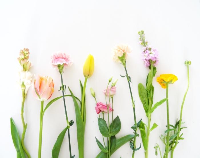 blog bloemen rij 1